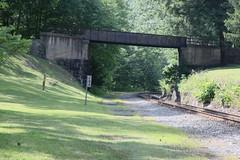 West Virginia 6-12-588 (Cwrazydog) Tags: thomas stewart westvirginia davis parsons blackwaterfalls elkins grafton philippi belington morantown