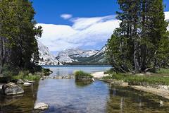 Tenaya Lake (Josemaria Larraga) Tags: lake landscape yosemite sierranevada tenayalake natureparks 35mmsummicronasph leicam9