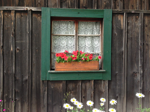 Alpine window