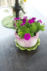 (mistert2) Tags: garden walk 2012 newburg tamronaf28300mmf3563xrdivcldasphericalifmacroa20