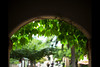 August (moaan) Tags: life summer green digital 50mm arch dof midsummer bokeh ivy utata 2012 f12 inlife ef50mmf12lusm canoneos5dmarkiii