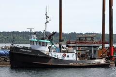 Storm Force  At Campbell River (rog45) Tags: canada canon bc 7d tugboat tug tugs 18200 campbellriver stormforce rog45