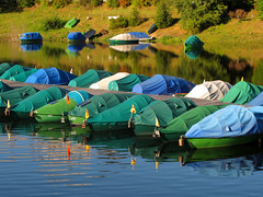 Fishing Boats resting at Schluchsee (Batikart) Tags: city travel blue light summer vacation urban white lake plant color colour reflection tree green nature water grass leaves yellow rural canon reflections germany landscape geotagged boats outdoors deutschland see harbor tents fishing bush flora holidays europa europe day ship path sommer urlaub natur meadow tranquility sunny august row boote lakeside line growth covered lakeshore rippled spiegelung schwarzwald blackforest variation 2012 schluchsee habour ordered g11 fishermanboat badenwrttemberg swabian 100faves rainfly viewonblack nauticalvessel batikart canonpowershotg11