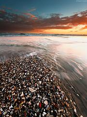 Shells (Corsaro078) Tags: sunset shells seascape landscape tramonto paesaggio gusci