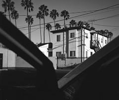Midday noir (ADMurr) Tags: door bw film car rollei palms la explore planar acros southla