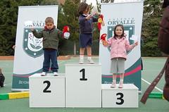 orvalle-miniolimpiadas-2014 (408)