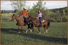 fun (zawaski) Tags: horses canada calgary beauty ambientlight dick noflash alberta bonnie rockymountains canmore canonefs18200mmf3556is zawaski2016