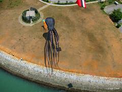 Giant Octopus (Erich Chew) Tags: singapore sing kap kiteaerialphotography marinabarrage canons95 skyrigsmkv 10ftdiyredrokkaku