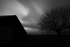 Barn and Tree Long Exposure (FotodioxPro) Tags: longexposure winter blackandwhite tree nature monochrome silhouette clouds barn dark landscape illinois moody outdoor farm stormy motionblur haunting serene circularpolarizer ndfilter newproduct landscapephotography nd1000 fotodiox filtersystem ultrawideanglelens fotodioxpro wonderpana wonderpanafreearc canon1124mm canonef1124mmf4l wonderpanaxl filterforcanon1124