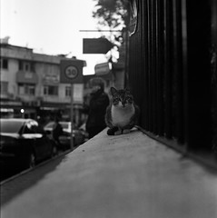 scan0006 (Uur AVCI) Tags: street blackandwhite 120 mediumformat streetphotography medium neopan neopan400 rodinal yashica mat124g fujineopan400 agfarodinal film:brand=fuji developer:brand=agfa developer:name=agfarodinal film:iso=320 film:name=fujineopan400 filmdev:recipe=10751