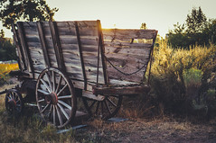 Wagon (greghanover) Tags: sunset summer sunlight nature grass oregon centraloregon wonder wagon evening wooden day bend outdoor highdesert pioneer oldmilldistrict pioneersopioneers
