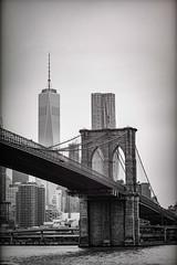 Brooklyn Bridge and Freedom Tower (Tiff&Deke) Tags: nyc newyorkcity brooklyn bridges brooklynbridge freedomtower