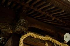(LAYDOCK) Tags: 50mm nikon saga  shintoshrine d610  sigma50mmf14exdghsm  ushijimatenmangushrine