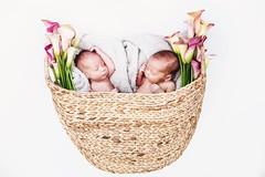 Los Gemelos (Bravo Fotografia) Tags: baby cute twins babies lindos gemelos bellos lingos