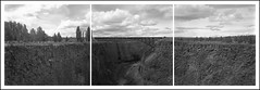Crooked River Gorge Triptych (ASHLANDJET) Tags: trestle blackandwhite panorama tlr film monochrome centraloregon analog rolleiflex train mediumformat triptych kodak canyon vintagecamera 35e planar trix400 traintrestle crookedrivergorge rolleiflexpanoramahead