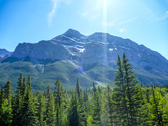 Rundlel (djking) Tags: trees mountain canada alberta rundle goatcreek rundlemountain