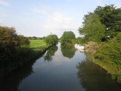 River Thanes near Abingdon (John Steedman) Tags: uk greatbritain england thames river unitedkingdom berkshire oxfordshire berks oxon grossbritannien     grandebretagne