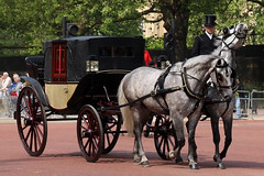CARRIAGE (NTG's pictures) Tags: the major generals review rehearsal for trooping colour british army household division cavalry blues royals lifeguards london mall