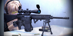 """""""No Compromise"""" (Eripom^^) Tags: field fight military rifle navy sac battle special gloves knights secondlife american weapon sniper operations shooting marines harris combat range carbine ctr kac m110 armament leupold aimpoint sr25 fdt ssoc magpul tonktastic"""