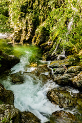 piece of heaven () Tags: nature water beautiful beauty creek river landscape photography whitewater bulgaria whiteriver balkan      kalofer    summergreen      nationalparkcentralbalkan bialareka