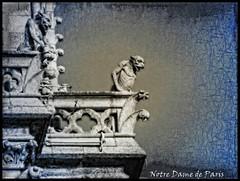 NOTRE-DAME'S GARGOYLES (Sigurd66) Tags: paris france frankreich ledefrance cathedral gothic catedral frana notredame gargoyle prizs francia parijs romancatholic gotique cathedrale pars parigi gargola gotico pras roseton rpubliquefranaise pary lutetia notredameparis frantzia pa paries francja pariisi pariis pariz par ourladyofparis parizo notredamegargoyle fachadanotredame parsi parze paryius paris fras paryzh brs pari porticonotredame gargolasnotredame