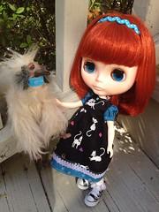 C: Do you like my kitty dress?