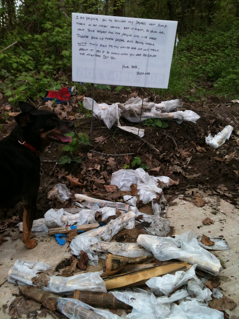 I AM PAYING YOU TO DELIVER MY PAPERS NOT DUMP THEM IN AN ILLEGAL MANOR. GET IT RIGHT, DO YOUR JOB, HAVE SOME RESPECT FOR THE PEOPLE THAT LIVE HERE. PLEASE PICK UP THESE PAPER AND BRING THEM WITH THE SIGN TO MY OFFICE AND WE WILL TALK ABOUT IT. YES I DO KNOW WHO YOU ARE BECAUSE SOMEONE SAW YOU. YOUR BOSS, RICHARD