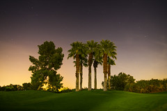 Night In Rancho Mirage (bryanscott) Tags: california night evening palmsprings palm springs