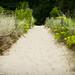 Pathway by Gloria Alexanders 来自: ...