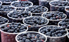 Blueberries (JohnCramerPhotography) Tags: food fruit berry farmersmarket blueberry vaccinium genusvaccinium