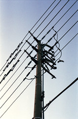 Power lines (Nunnsey) Tags: bird geometric lines silhouette power telephone off pole wires taking