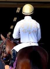 Hollywood Park racing (Suzanne - neusuz5) Tags: horse losangeles nikon jockey horseracing nikkor thoroughbred d800 28300 hollywoodpark
