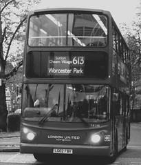 London United TA248 on route 613 Sutton Green 07/11/12. (Ledlon89) Tags: bus london united transport surrey schoolbus sutton londonbus tfl alx400 aleanderdennis