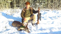 Roe Deer Hunting in Estonia