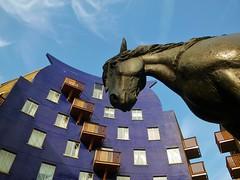 Hello Jacob! (helenoftheways) Tags: uk blue sculpture horse london freeassociation statue architecture bronze artwork jacob balconies southwark horselydown