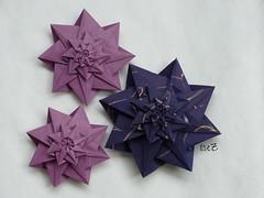 Star Mathilda by Dasa Severova (esli24) Tags: origami origamistar papierfalten origamistern dasaseverova singlesheetorigami esli24 ilsez starmathilda sternmathilda logarithmicstar hilli'spapier hillizenz