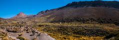 Vall geisers (faltimiras) Tags: park volcano national np laguna parc nacional altura altiplano volcan volca sajama vizcacha pomerape altipla panicota