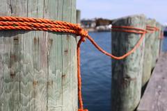Orange Rope Repetition (Read2me) Tags: thechallengefactory rope pier orange wood pilings dof she cye repetition storybookchallengeotr friendlychallengessweep gamesweepwinner pregamewinner perpetual perpetualchallengewinner 15challengeswinner