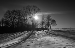 Time of long shadows -    (Igor Danilov) Tags: life morning winter bw usa sun white snow black cold love philadelphia home monochrome one mono iso200 nikon ray shadows time pennsylvania earth be dslr f8 stay closer 18mm 12000  d90      igordanilov