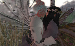 Good night at Tatakai Tochi (niki wirefly) Tags: male wings couple sl fairy secondlife fairey niki fae lufian
