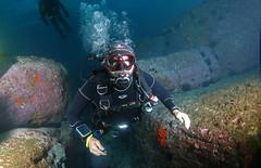 Tom descending at Shark Point, Sydney (Marine Explorer) Tags: nature marine underwater scuba marineexplorer