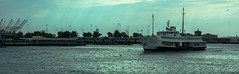 IMGP2455-2 (UmitCukurel) Tags: nightphotography sea night cat turkey puente mar pentax turkiye istanbul gato turquia bogazici bosphorus kedi kizkulesi maidentower k3ii