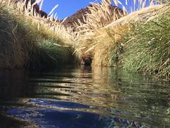 - 2016-05-12 at 15-01-38 + hot water springs