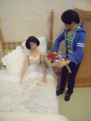 My First LaurenLand Story Part 2, 2 of 12 (suekulec) Tags: bedroom story 16 playscale