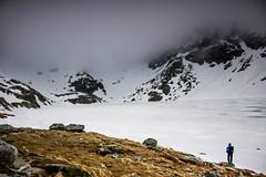 in the new light (Dominika Dan) Tags: mountain nature fog