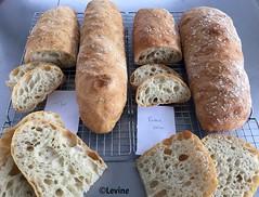 Ciabatta (Levine1957) Tags: bread ciabatta brood