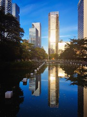 Building Building Exterior Buildings Sky Skyscraper Water Reflection Architecture Cityscape Sunny Day Outdoors Office Building Blue Standing Water Travel Destinations City Life Cloud China Shenzhen (Little Inca Photography) Tags: china blue sky cloud reflection building water architecture skyscraper buildings outdoors day cityscape citylife officebuilding sunny shenzhen standingwater traveldestinations buildingexterior
