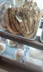 (sftrajan) Tags: mexicocity patisserie bakery pastry bckerei konditorei panaderia centrohistrico panadera 2016 pastryshop ciudaddemxico pastelera cittdelmessico mexikostadt    calletacuba lavasconia