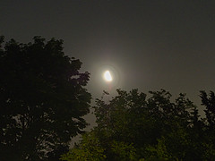 P6279339 (Paul Henegan) Tags: trees summer moon mist stars moonrise lensflare pollen lightpollution thirdquarter