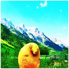 Kartoffel in den Bergen (stefanielaiminger) Tags: kartoffel berge kartoffelindenbergen erdapfel potatoe weitwinkel perunat gschnitztal mhlendorf surreal traumwelt surrealism